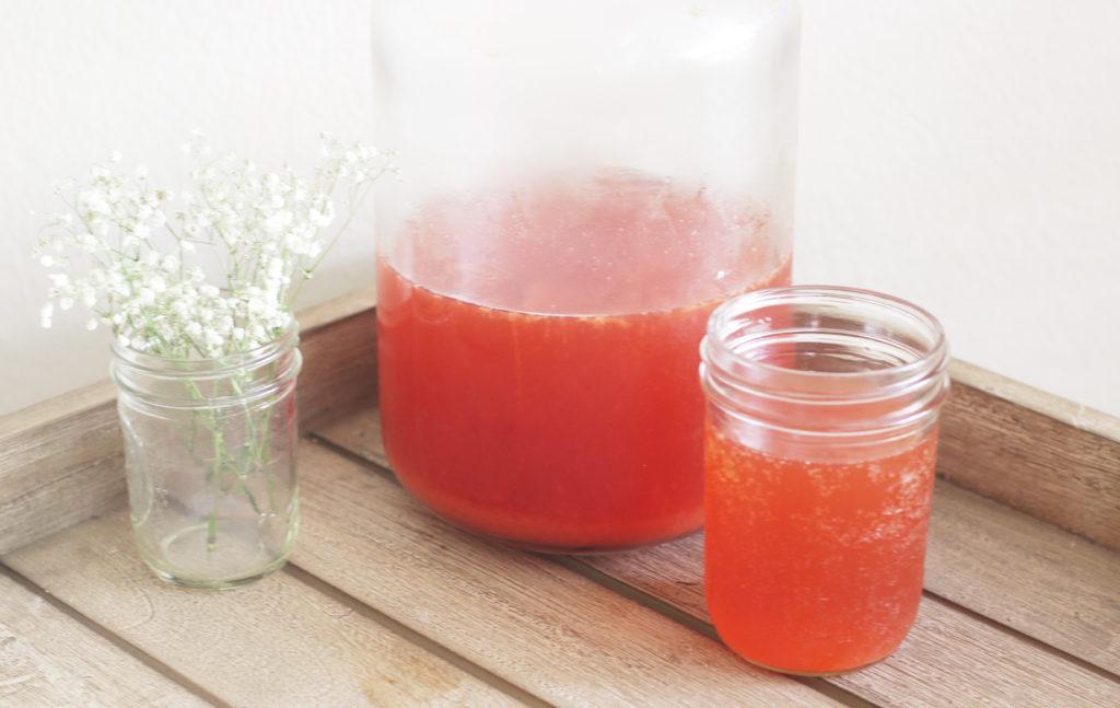 homemade kombucha | heatherlaurenlove.com